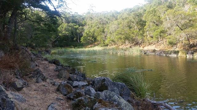 Budj Bim National Park