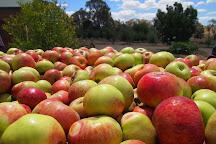 Small Acres Cyder, Borenore, Australia