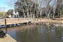 Doho Park, Tsukuba, Japan