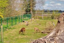 Dierenpark Taman Indonesia, Kallenkote, The Netherlands