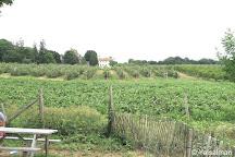Brooksby Farm, Peabody, United States