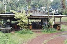 Finca Sura, Puerto Viejo de Sarapiqui, Costa Rica