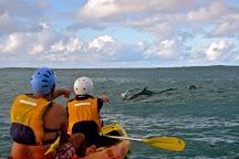 Go Sea Kayak at Byron Bay, Byron Bay, Australia