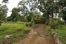 Cinchona Botanical Gardens, Jamaica