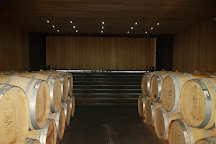 Vina Vik Winery, San Vicente de Tagua Tagua, Chile