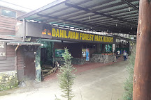 Dahilayan Forest Park, Valencia City, Philippines