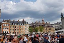 La Grande Braderie de Lille, Lille, France