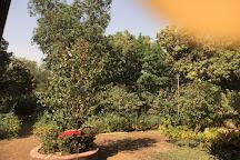 Vrindavan Farm, Alibaug, India