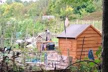 Forest Farm Country Park, Cardiff, United Kingdom