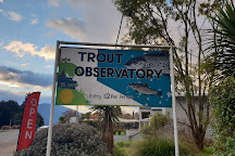Trout Observatory, Te Anau, New Zealand