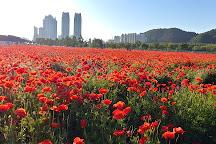 Taehwagang National Garden, Ulsan, South Korea