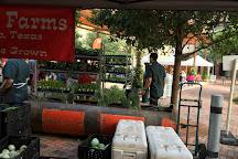 Pearl Farmers Market, San Antonio, United States