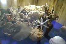 MARELLE'S SEASHELL MUSEUM- RESTAURANT & BAR- GIFT SHOP, San Juan, Philippines