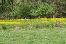 Darnell Farms, Bryson City, United States