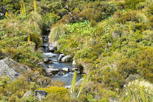 Hooker Valley Track, Aoraki Mount Cook National Park (Te Wahipounamu), New Zealand