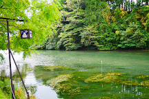Matsue Jozan Park, Matsue, Japan