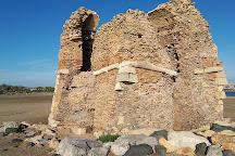 Monumento Naturale Palude di Torre Flavia, Ladispoli, Italy