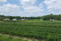 George Schmidt Berry Farm, New Tripoli, United States