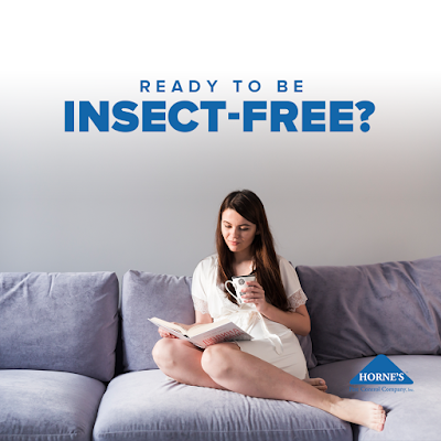 Ready To Be Pest Free? Call Horne's Pest Control - Augusta GA