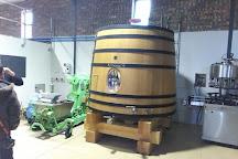 Vine Hopper, Stellenbosch, South Africa