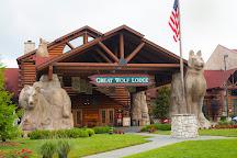 Great Wolf Lodge Williamsburg, Williamsburg, United States