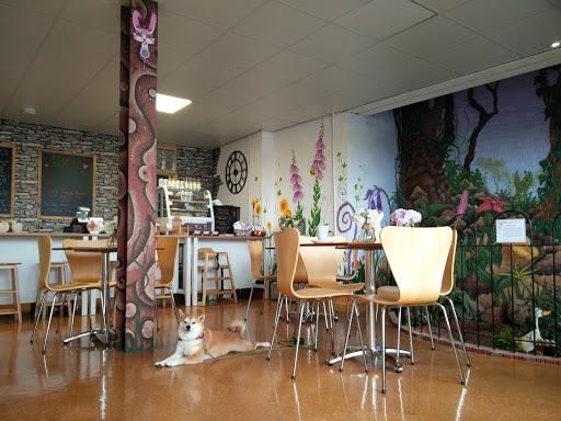 Rabbit Vegan Cafe