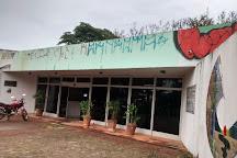 Marieta Telles Machado Library, Goiania, Brazil