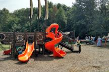 Summit Park, Ludington, United States