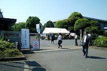 National Maritime Research Institute, Mitaka, Japan