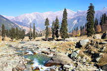 River Songs Tours and Travels, Srinagar, India