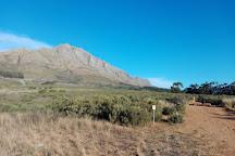 Gspot MTB trails, Stellenbosch, South Africa