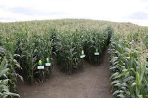 Great Vermont Corn Maze, Danville, United States