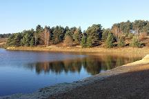Mechelse Heide, Maasmechelen, Belgium