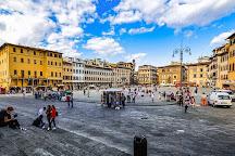 Scuola Toscana, Florence, Italy