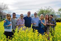 Bliss Wine Tours, Napa, United States