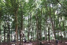 Jungle Parc, Swindon, United Kingdom