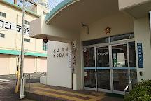 S Pulse Dream Plaza, Shizuoka, Japan