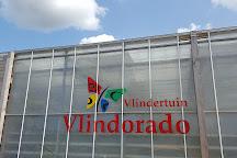 Vlindertuin Vlindorado, Waarland, The Netherlands