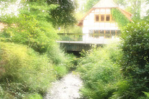 Muhlenteich, Munster, Germany