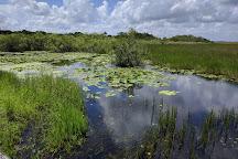 Everglades National Park, Florida City, United States