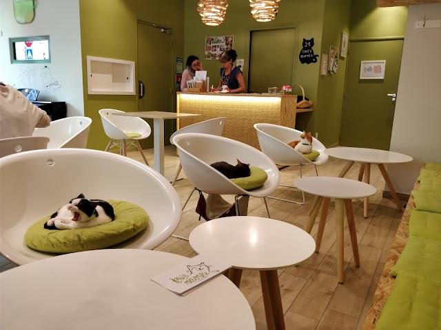 Ronron Cafe