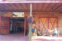 Perry's Berry's Blueberry Farm & Winery, Morganton, United States