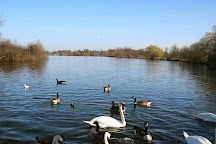 Dinton Pastures Country Park, Hurst, United Kingdom