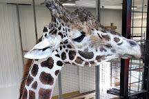 Plumpton Park Zoo, Rising Sun, United States