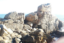 Roca Oceanica, Concon, Chile