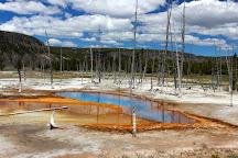 Black Sand Basin, Yellowstone National Park, United States