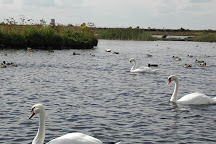 Lough Boora Discovery Park, Tullamore, Ireland