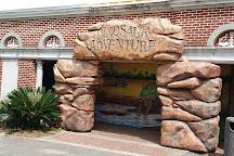 Audubon Zoo, New Orleans, United States