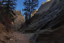 Lick Wash Slot Canyon, Kanab, United States