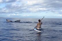 Paddle On! Maui, Makena, United States